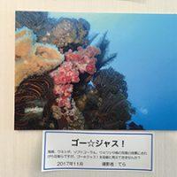 photoexhi2021-2